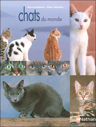 Chats du monde