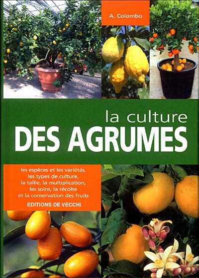 La culture des agrumes