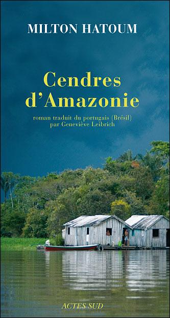 Cendres d'Amazonie