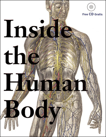 Inside the human body