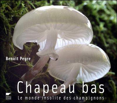 Chapeau bas, le monde insolite des champignons